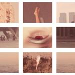 DI PROSPERO, Instinct, 2012 02_a